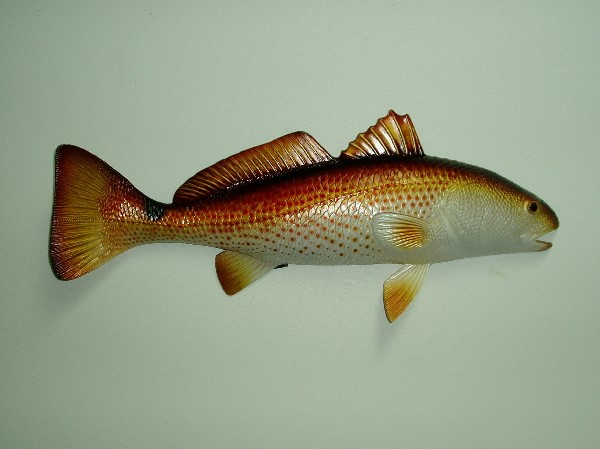19in Redfish Wall Decor