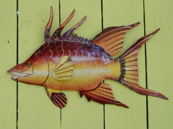 15in Metal Hogfish Wall Art